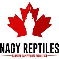 Nagy Reptiles